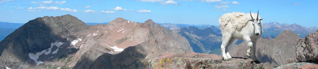Chicago Basin 14 Ers Trips San Juan Mountain Guides