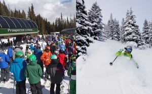 Which lines do you prefer? Powder or Crowded?