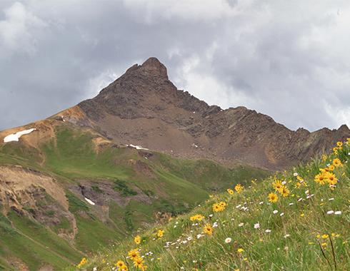 wetterhorn-peak